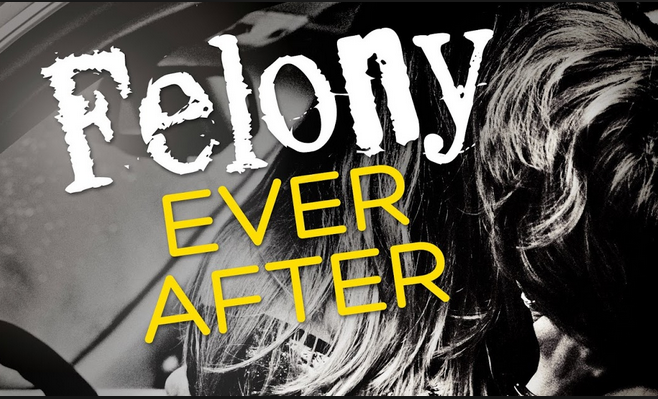 Review & Cocktail: Felony Ever After (A Domino Anthology) by Helena Hunting